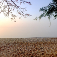 hotel-playa-manglares-isla-baru-beach-13